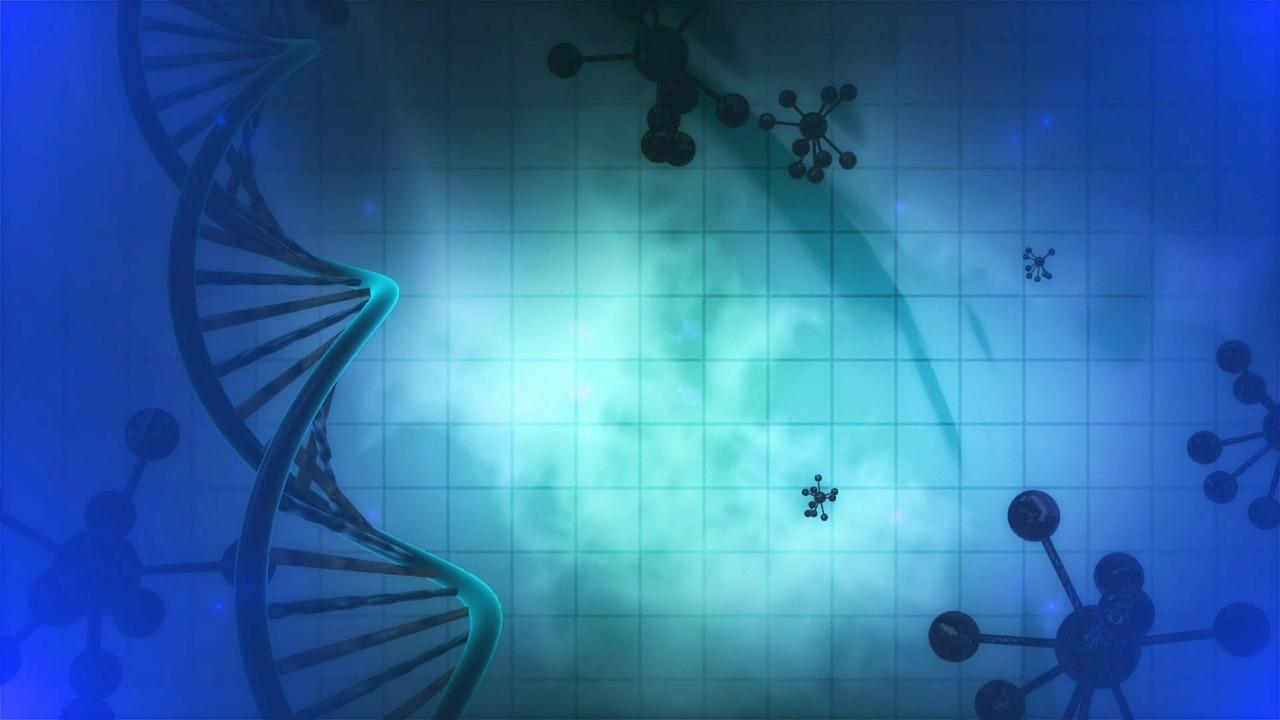 DNA Eiwitten